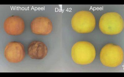 An Apeel-ing idea worth $1 billion