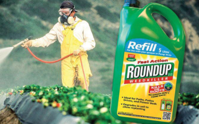 Roundup goes down